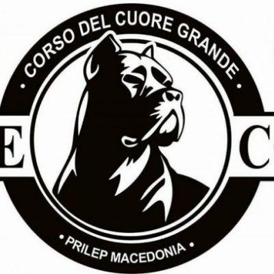 Corso Del