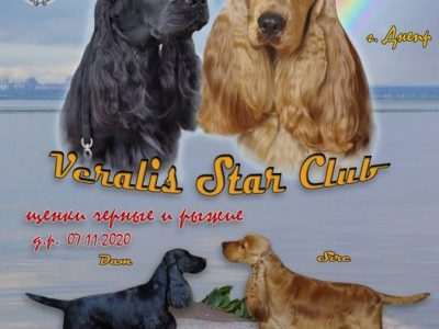 Veralis Star Club