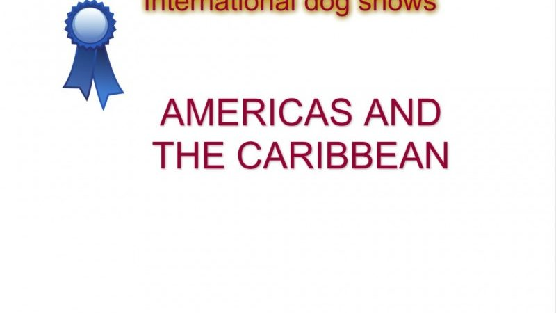 Americas and the Caribbean