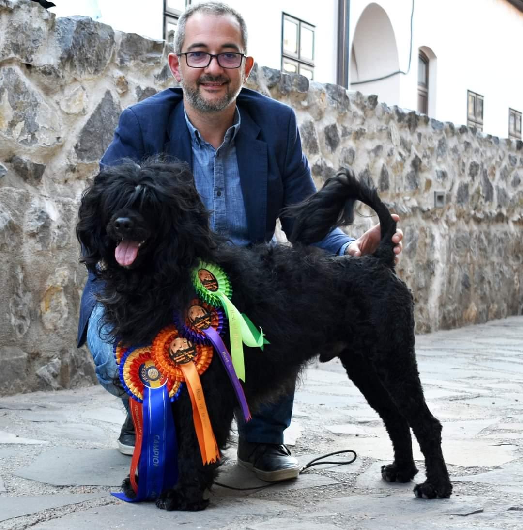 LOTRANDO Z KASETEK (LOTO) | PORTUGUESE WATER DOG