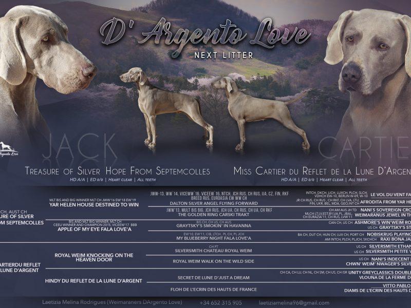 D'argento love kennel-WEIMARANER