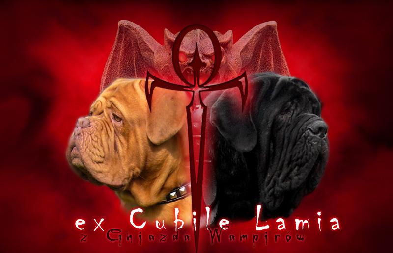 """Dogue de Bordeaux - Kennel """"ex Cubile Lamia"""" FCI"""